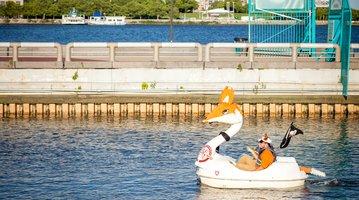 01-061016_SwanBoats_Carroll.jpg