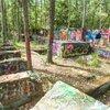 Carroll - Pine Barrens Pinelands
