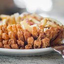 02-062216_BloominOnion_Carroll.jpg