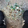 Carroll - Broken Glass From Recycling Trucks