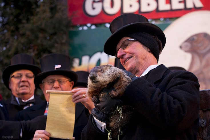 02022018_Groundhog_Day_2013_wiki