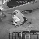 02032017_Abduction_Suspect_PPD