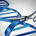 02142017_genome_editing_iStock
