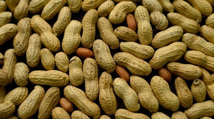 02232015_peanuts_AP.jpg