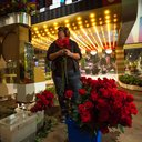 022615_Flowers_Carroll-01.jpg