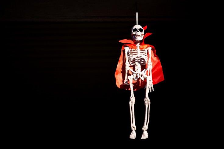 Carroll - Halloween Decorations