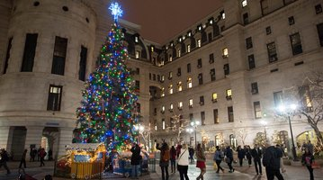 Philadelphia City Hall christmas tree