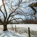 030215_SaveTheValley_Carroll-2.jpg