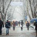 03022016_light_snow_generic_AP