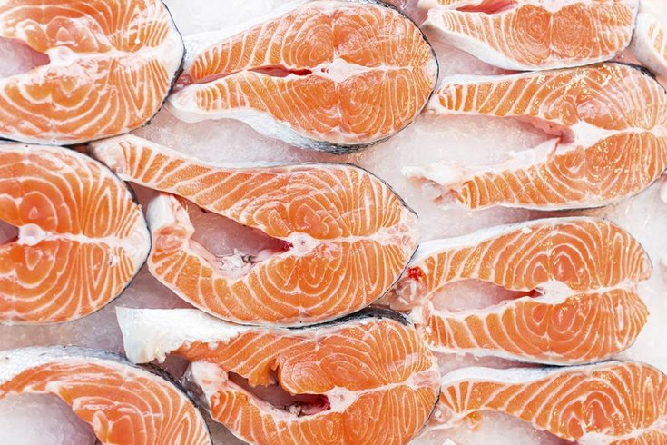 Better sleep, high IQ linked to fish consumption, study finds