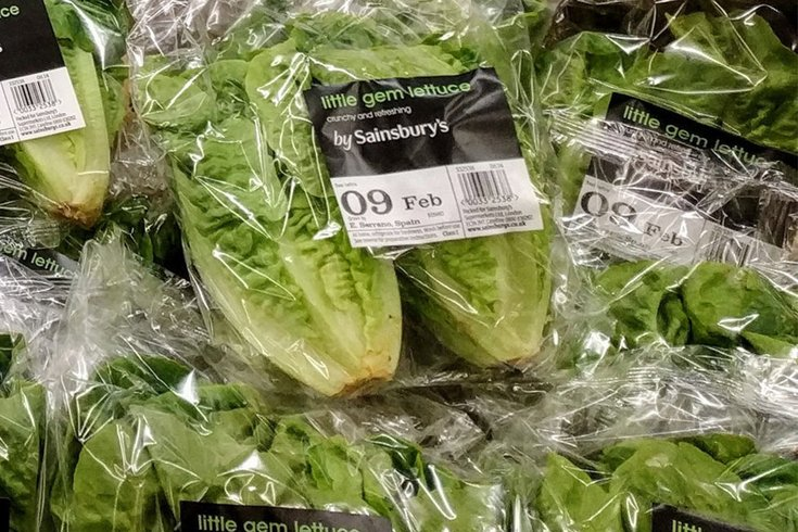 Coli outbreak linked to romaine lettuce spreads to more states