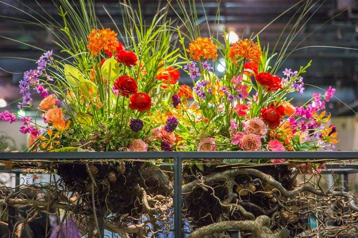 Carroll - 2018 PHS Philadelphia Flower Show