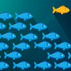 07032017_Independence_Fish_iStock