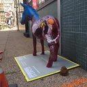 07122016_DNC_Donkey_Idaho