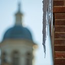 080115_COLD _Carroll-7.jpg
