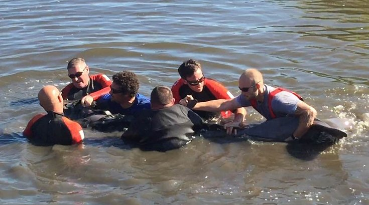 08092016_dolphin_rescue1_MMSC