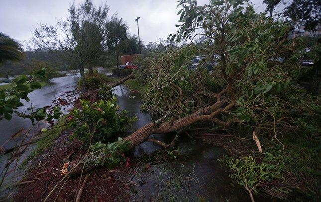 09112017_Irma_Florida2_APjpg.jpg