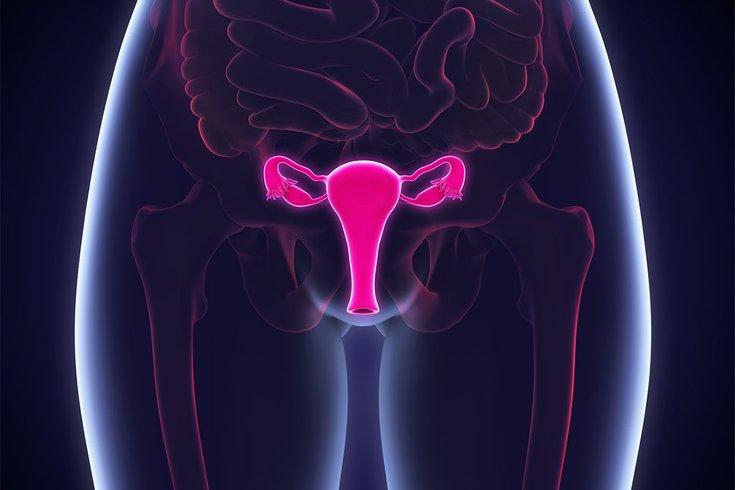 09122017_female_reproductive_iStock