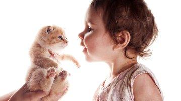 10032016_cat_girl_iStock