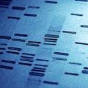 10212015_genetic_markers_iStock