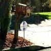 10312017_Tigger_mailbox