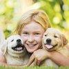 11022015_child_puppies_iStock