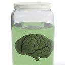 11252015_brain_specimen_iStock