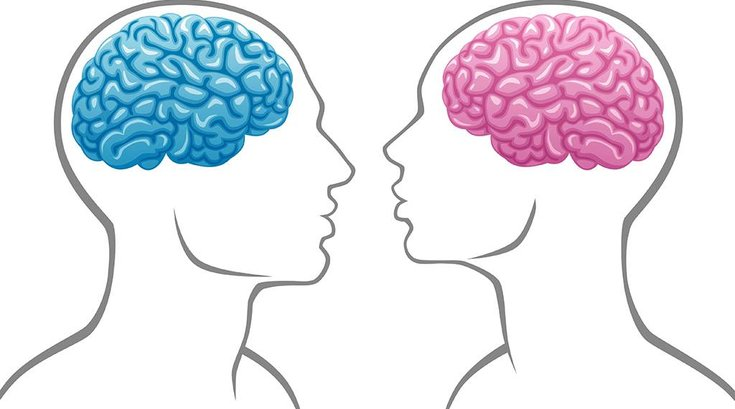 12152015_gender_brains_iStock
