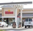 New Jersey Wawa Gas Station Stock_Carroll