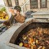 Composting2