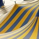 04162015_Circus_Reuters