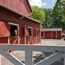 Horse barn New Hope