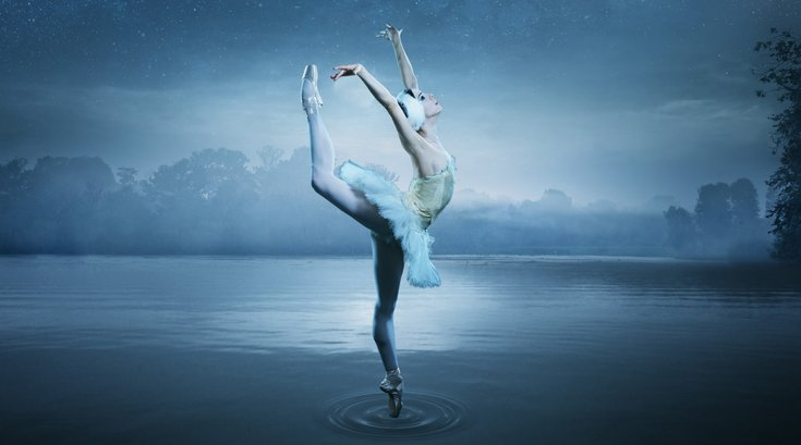 Swan Lake Creative for PA Ballet