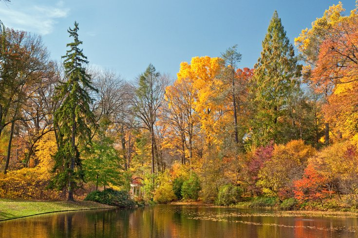 U0027Autumnu0027s Colorsu0027 Light Up Longwood Gardens