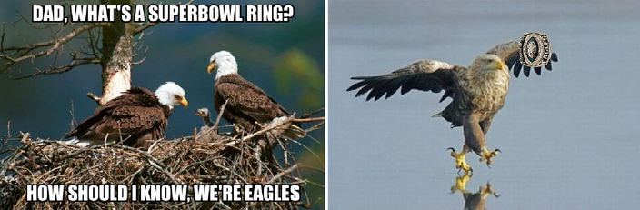 9_ _Eagles_struts.width 704 let me fix that eagles super bowl meme for you phillyvoice