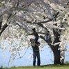 Spring Weather Philadelphia