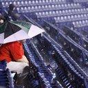 Phillies fan umbrella