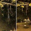 Lanterns or nooses?