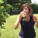Chardonnay Go