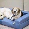 11062015_DogsTogetherSuite