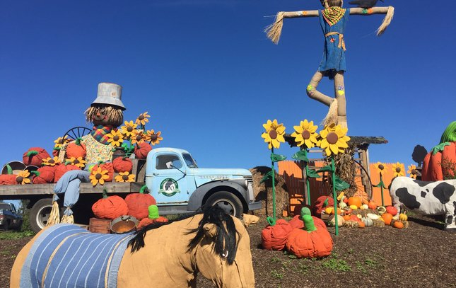 Fall Decorations at Linvilla Orchards