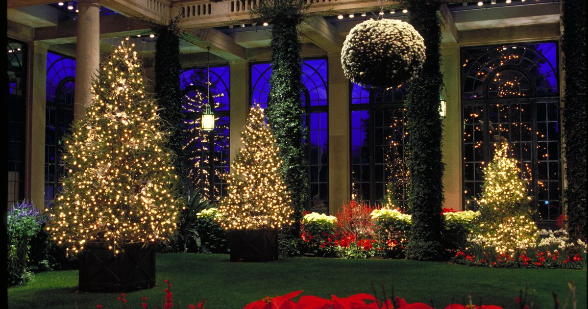 Longwood Gardens Christmas Light Show Phillyvoice