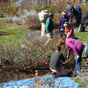 Gardening workshop at Morris Arboretum