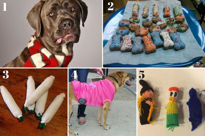 Pets Gift Guide 2