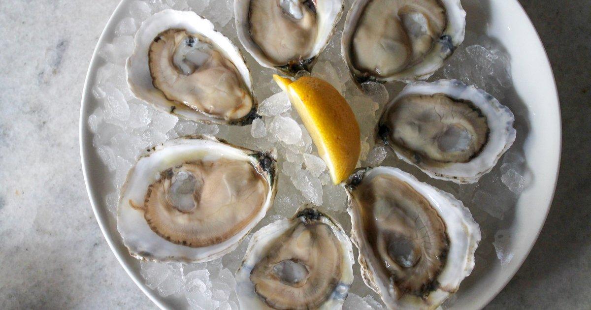 Oyster deals boston 2018