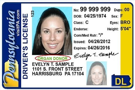 Pennsylvania driver's licenses will soon expire as valid form of ...