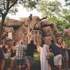 Ale Fest at Philadelphia Zoo
