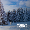Toomey Snowscape