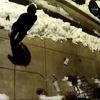 Sidewalk Poop