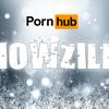 012816_Pornhubsnowzilla